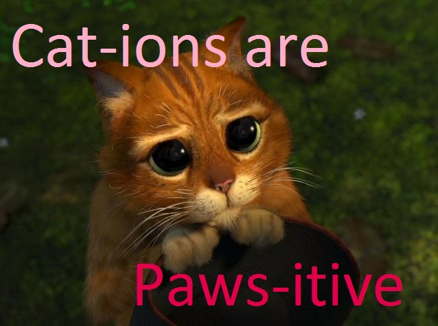 Cat-ions are paws-itive