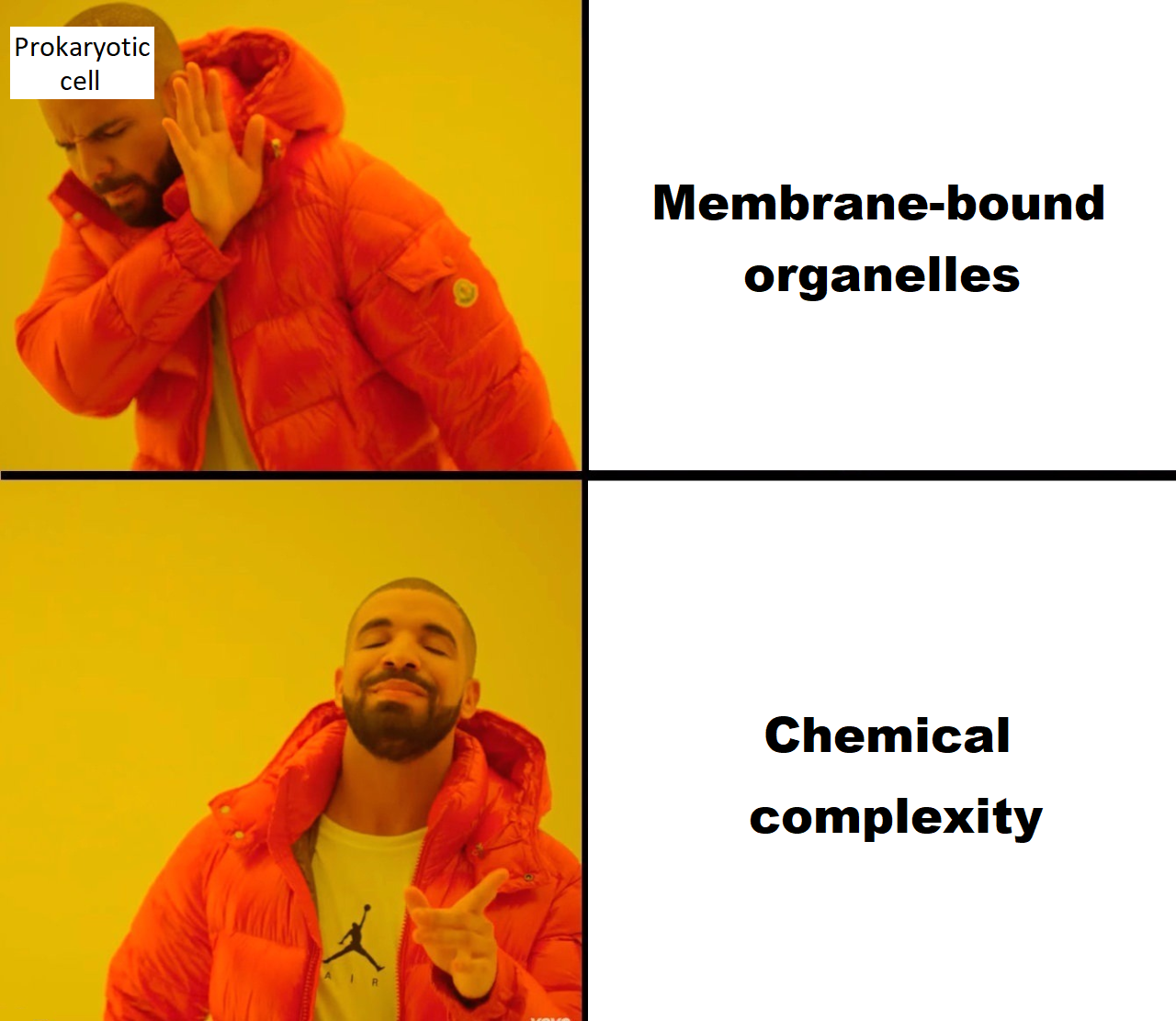 Drake Prokaryotic Cell